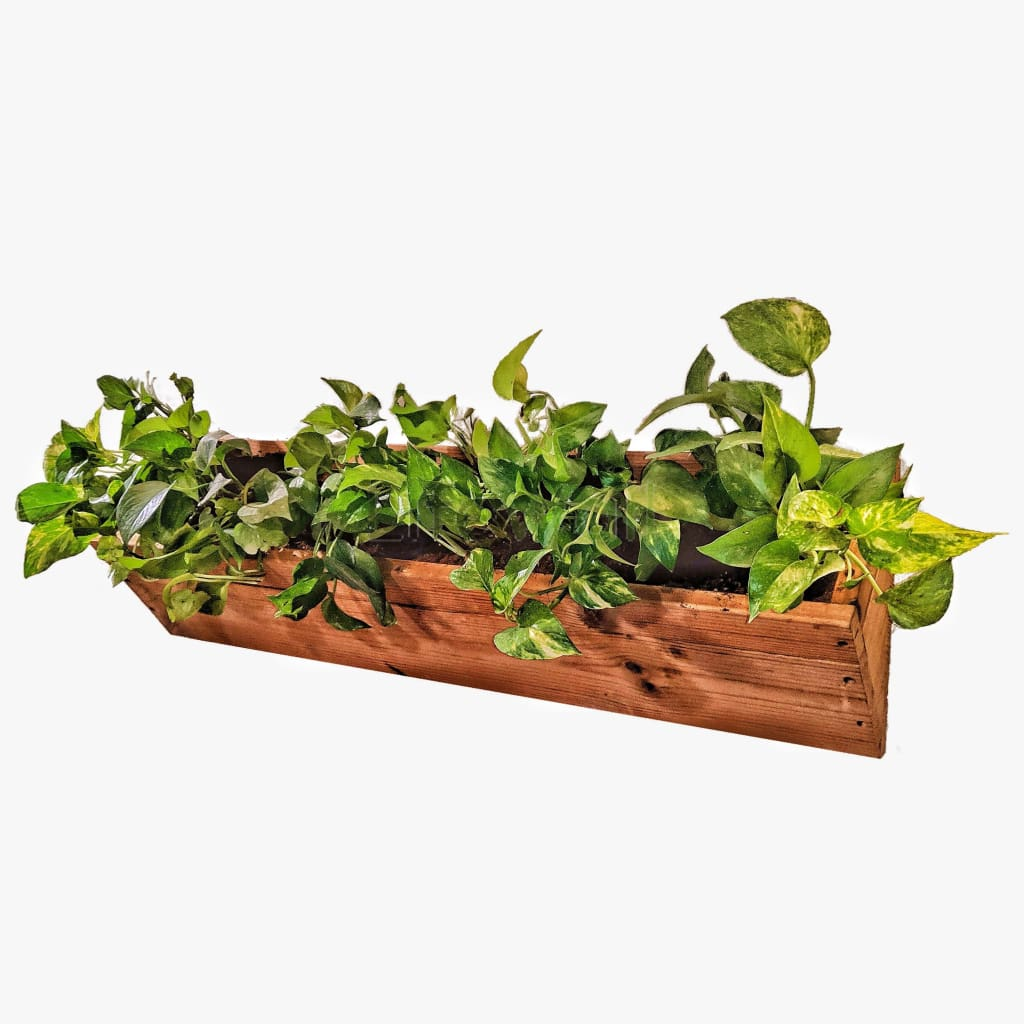 Pinewood Planters For Vertical Gardens - 100% Water & Termite Proof (In Pcs)