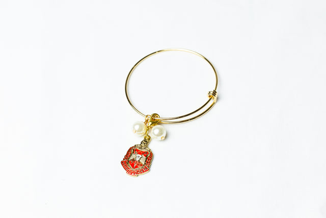 Gold Wire Bracelet with Delta Shield