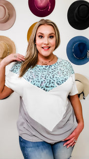Animal Print Striped Color Block Top (1XL-3XL)