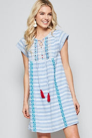 Plus Size A Line Dress with Tassels and Embroidery Detail
