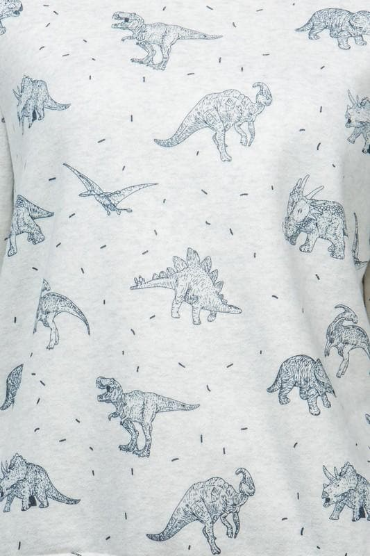 Plus Size Dinosaur Print Sweatshirt with Fleece Lining