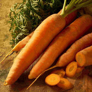 A bundle of dark orange McKenzie Seeds Carrot Scarlet Nantes Seed Tape Organic Vegetables