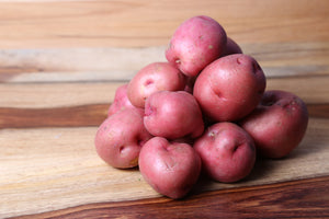 Norland Seed Potatoes