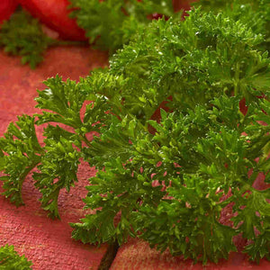 Sow Easy Parsley Evergreen