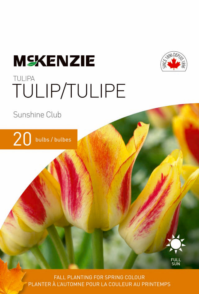 Tulip Sunshine Club