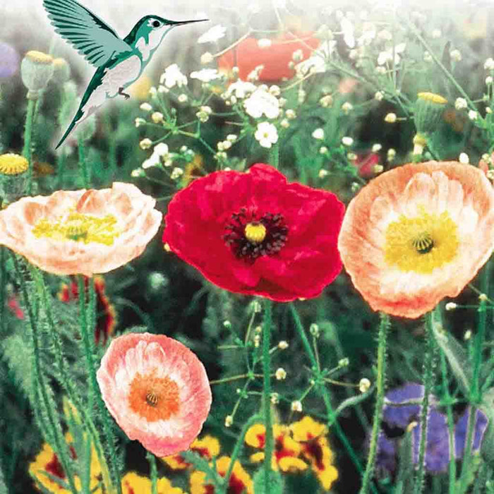 Wildflower Hummingbird Garden (Jumbo Pack)
