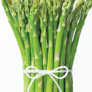 Make planting easier with these Asparagus Mary Washington Vegetable (sow easy) from McKenzie Seeds