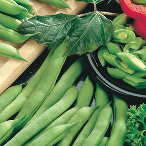 A selection of McKenzie Seeds Green Bean Tendergreen Improved (Bush) Organic