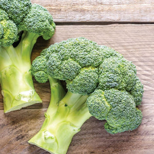 An old-school favorite with McKenzie Seeds Broccoli De Cicco Seeds