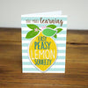 Easy Peasy Lemon Iron-on Patch Teacher Gift