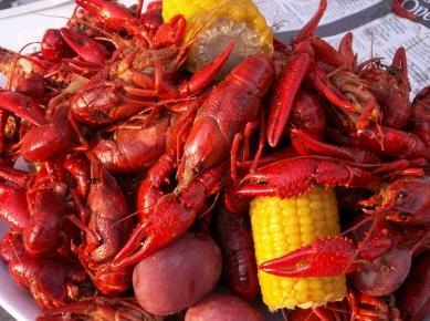 200 Pounds Boiled Crawfish
