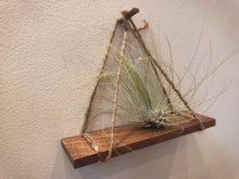 Load image into Gallery viewer, Air Plant Hangers (Set of 3)