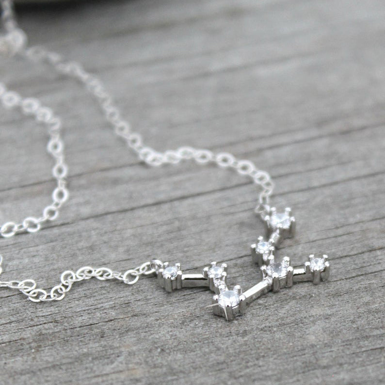 Constellation Silver Zodiac Necklace