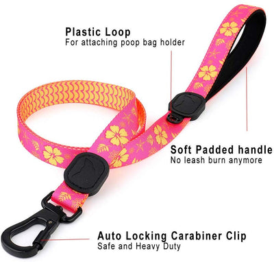 Toy Doggie™ - Tropical Party Premium Dog Leash