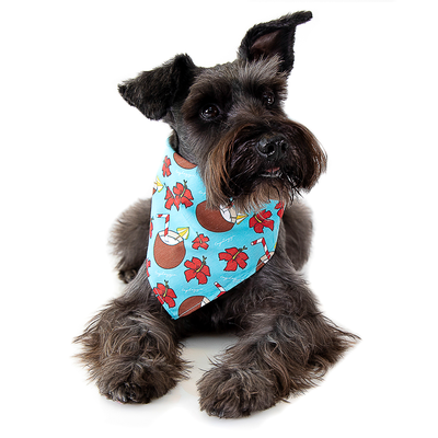 Toy Doggie™ - Aguita e' Coco Dog Bandana