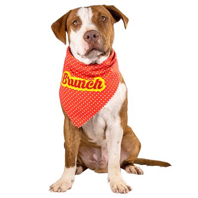 Toy Doggie™ - Brunch Dog Bandana