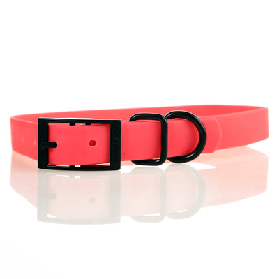 Toy Doggie™ - The Jubilant Dog Sport Collar