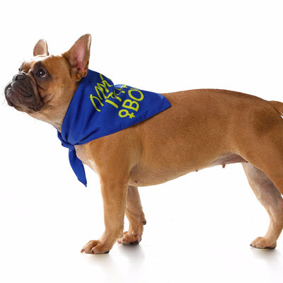 Toy Doggie™ - Oh my dog! It's a Boy! Dog Bandana