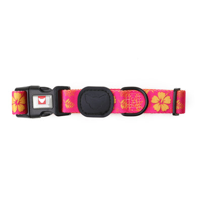 Toy Doggie™ - Tropical Party Premium Dog Collar