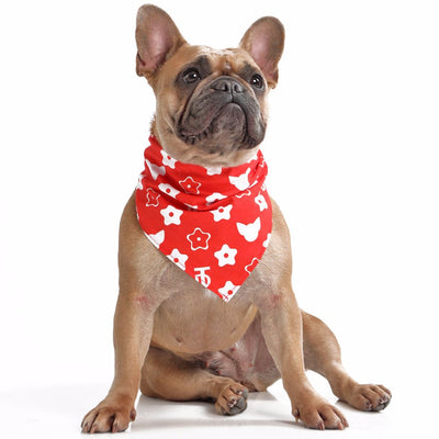 Toy Doggie Monogram- Swag Bandana