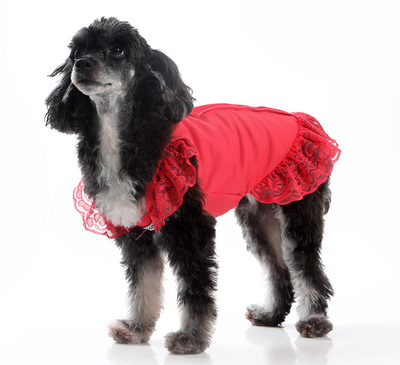 Toy Doggie™ - The Amapola | Girl Dog Dress