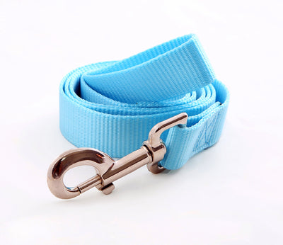 Toy Doggie™ - Turquoise Nylon Dog Leash