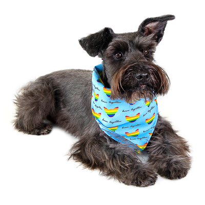 Toy Doggie™ - Brave Together Dog Bandana - Blue