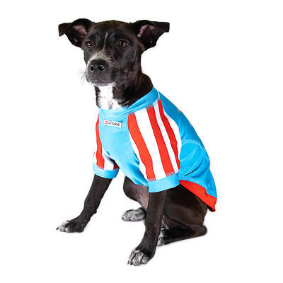 Toy Doggie™ - PAWTRIÓTICA Rash Guard Shirt