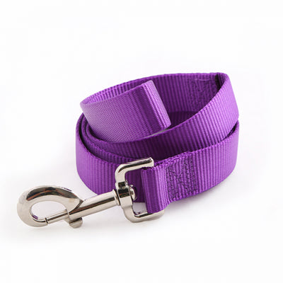 Toy Doggie™ - Vibrant Purple Nylon Dog Leash