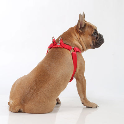 Toy Doggie™ - Deep Red Nylon Dog Harness