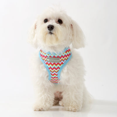 Toy Doggie™ - Retro Vibe Air-Mesh Dog Harness