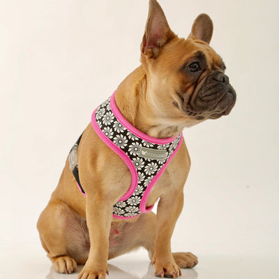 Toy Doggie™ - Flower Puff Air-Mesh Dog Harness
