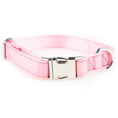 Toy Doggie™ - Holographic Pink Dog Collar | Prisma Collection
