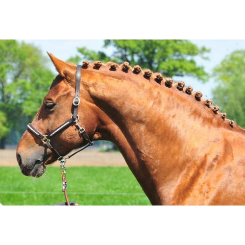 HKM Leather head collar -Diamond-