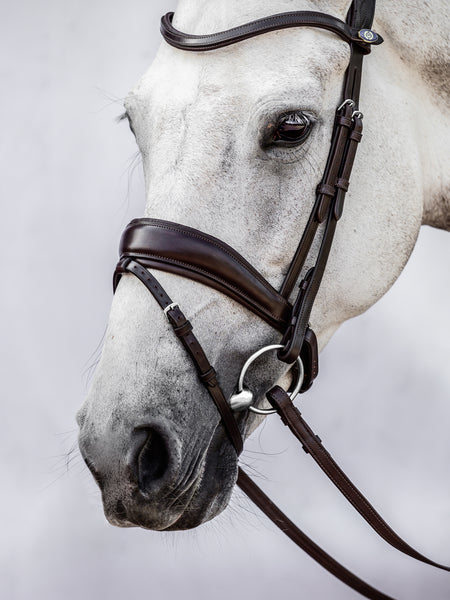 PS of Sweden Bridle, Flying Change