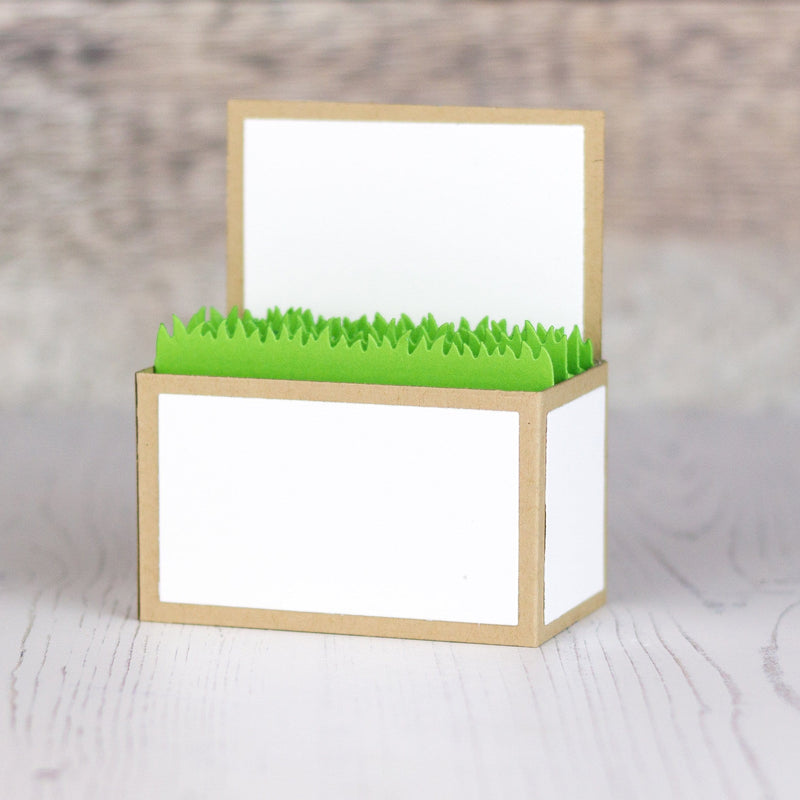 Outside the Box Grass Die-namics