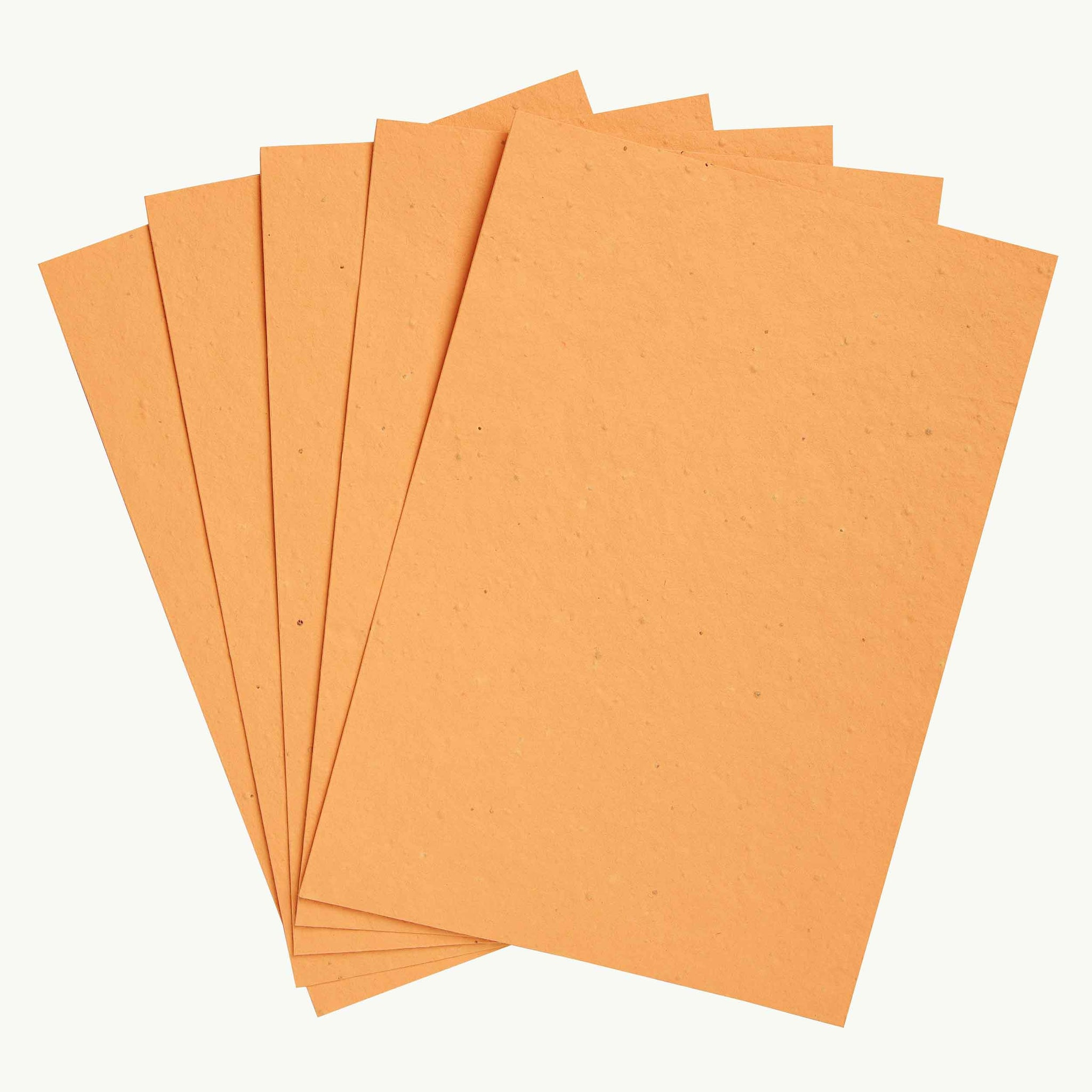 Orange Mixed Wildflowers Seed Paper
