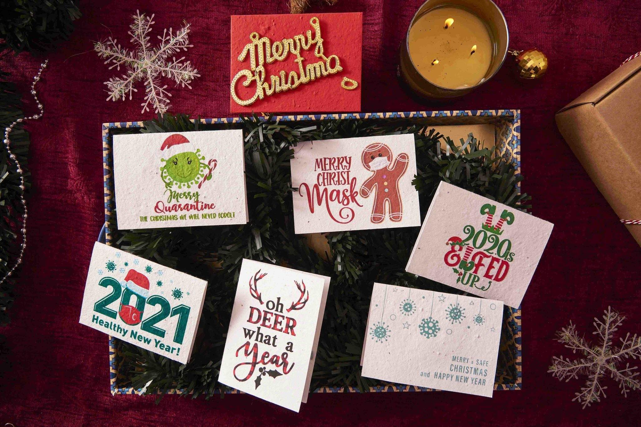 Covid Christmas & New Year Greetings (Set of 6 Cards) - Plantables