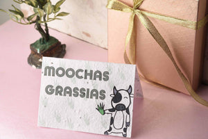 Moochas Grassias - Plantables