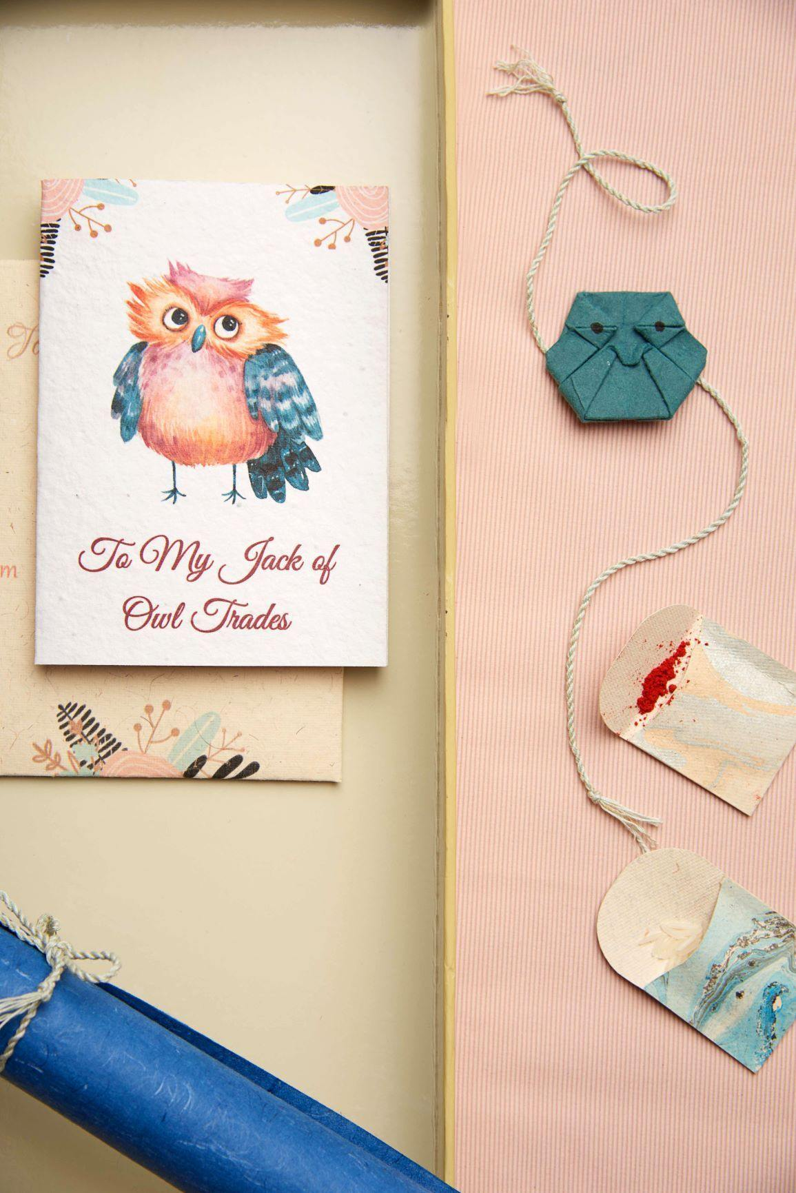 Owl-ways Rakhi Kit - Plantables