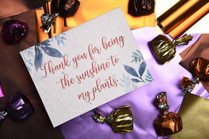 Thank you for being the sunshine to my plants - Plantables