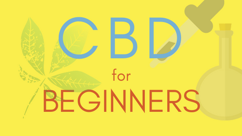 Text - CBD For Beginners