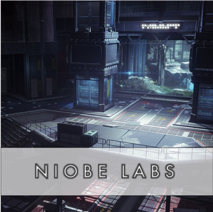Niobe Labs - Master Carries