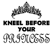Kneel Before Your Princess Insulated Tumbler (20oz)