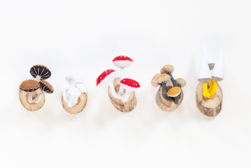 Felt Wall Mushrooms