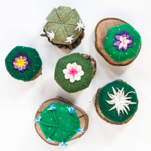 Load image into Gallery viewer, Mystery Felt Cactus