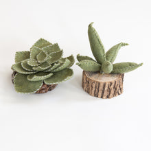 Load image into Gallery viewer, Felt Succulent