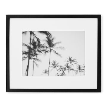 Black and white landscape photography of Kauai Hawaii.