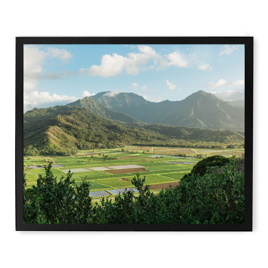 Hanalei Valley photos to buy for home decor.