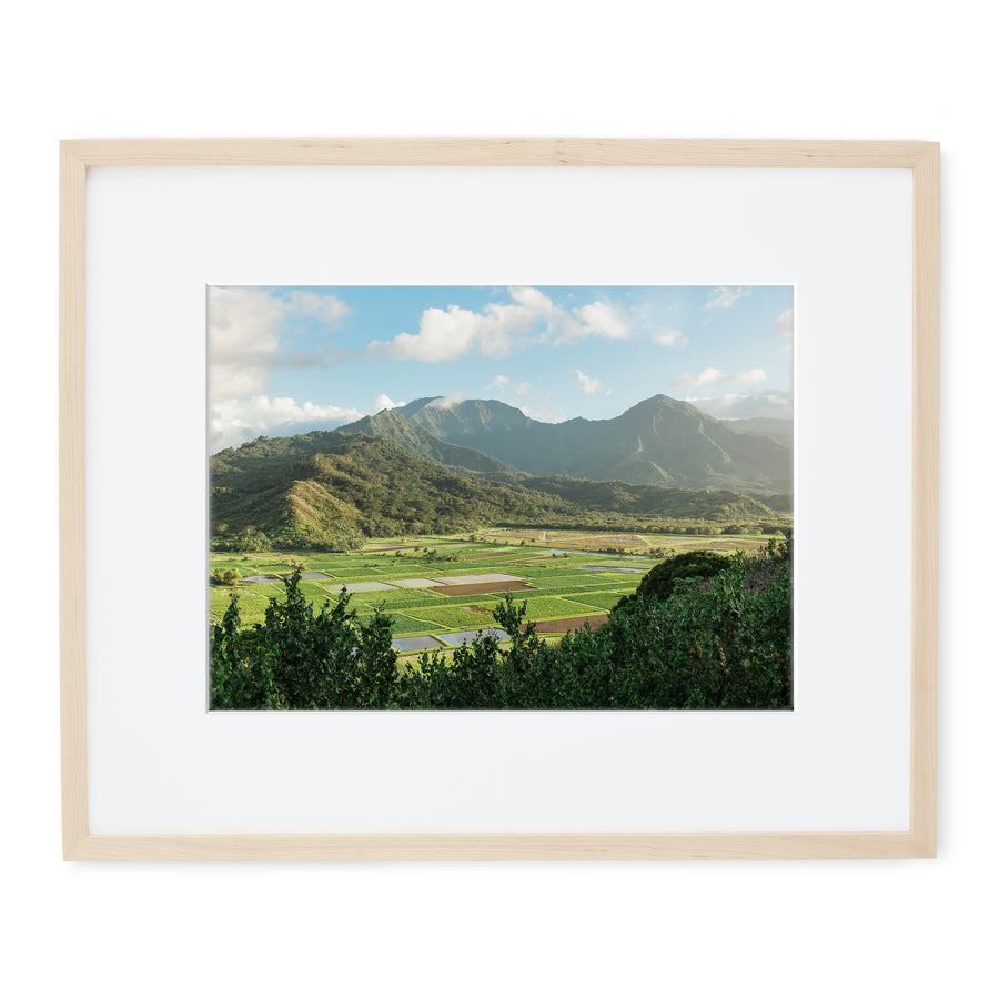 Wall art prints of kauai hawaii for your interior design.